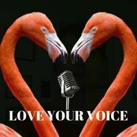 Elisa James Haps VoicePro - Voice and Presentation Coaching