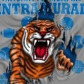 Memphis Intramural Sports