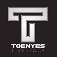 Toenyes Livestock