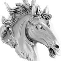 Mustang Print & Copy