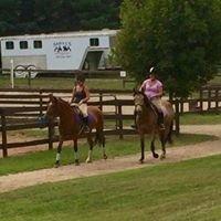 Sabills Morgan Horse Farm LLC