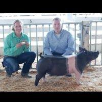Adams Family Livestock