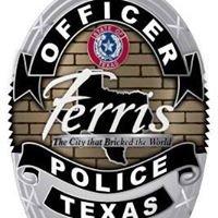 Ferris Police Department