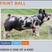 Keller Family Swine / Y2K Genetix