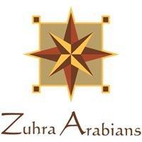Zuhra Arabian Horses