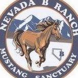 Nevada B Mustang Sanctuary