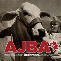 American Junior Brahman Association