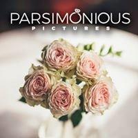 Parsimonious Pictures