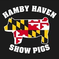Hamby Haven Show Pigs