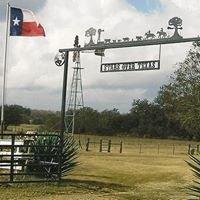 Stars Over Texas Longhorn Ranch