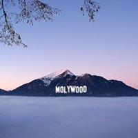 Môlywood