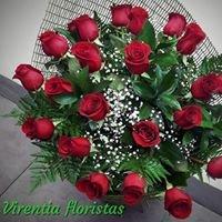 Virentia Floristas