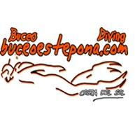 buceoestepona.com