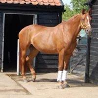 Hallingbury Hall Equestrian Centre