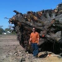 Ascension Tree and Stump, LLC