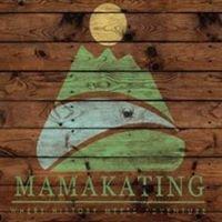 Town of Mamakating