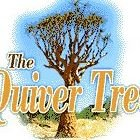 The Quiver Tree B&B Accommodation Langebaan