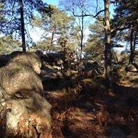 Forêt de Fontainbleau