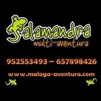 Salamandra Multi-Aventura