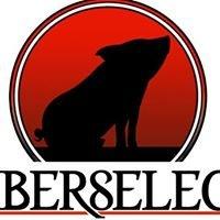 Iberselec