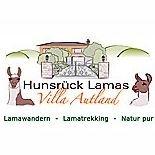"""Hunsrück Lamas """"Villa Autland"""""""