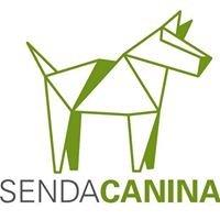 Senda Canina