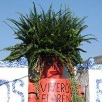 Lorraine Cavanagh's Garden Centre - Viveros Florena