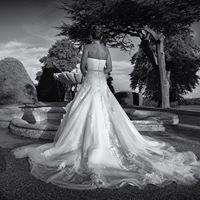 Goldeneye Wedding Photography