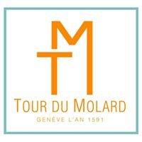 La Tour & Terrasse du Molard