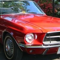 Vintage Cars for Hire