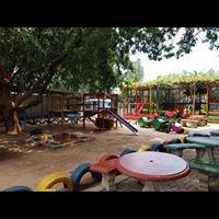 The Rose Garden Coffee Shop - Van den Berg's Nursery