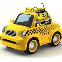 Busy Bee Transportation LLC
