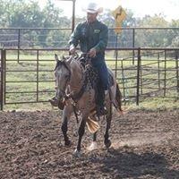 Cal Noyons Horsemanship