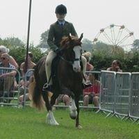 Godley Riding-School
