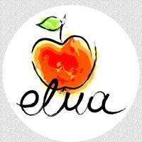 ELMA Beach / Restaurant / Bar