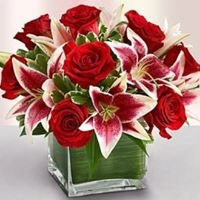 Fenton Flowers and Gifts