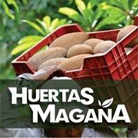 Huertas Magaña