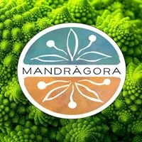 Herboristería Mandrágora