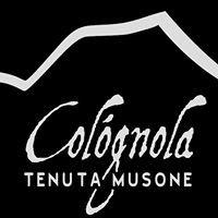 Cològnola - Tenuta Musone