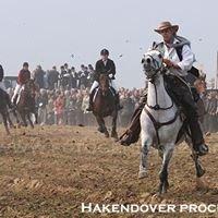 Internationale Paardenprocessie Hakendover