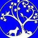 Sanitat Animal d'Alboraia (S.AN.A)
