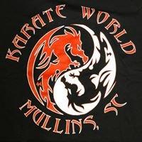 Karate World of Mullins, SC