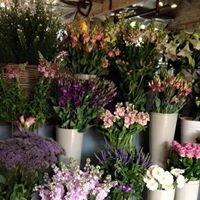 Pick A Lily Florist