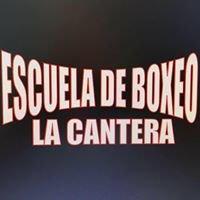 Escuela de boxeo La cantera