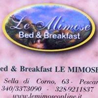B&B Le Mimose Pescara