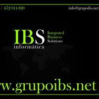 Grupo IBS