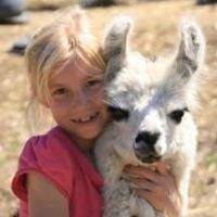Noahs Ark Farm Friends Petting Zoo