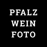 Pfalzweinfoto