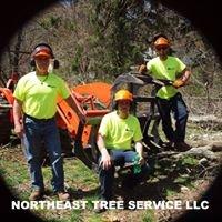 Northeast Tree Service, LLC