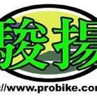 駿揚ProBike